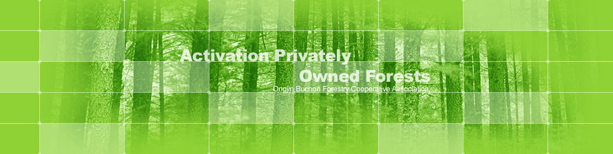 Activation Privately Owned Forests Ongjin Buchon Forestry Cooperative Association