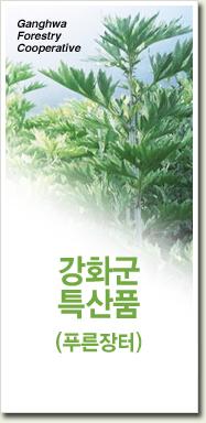 강화군특산품 (푸른장터)
