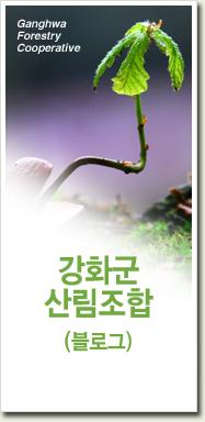 강화군산림조합 블로그