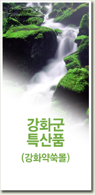 강화군특산품 (강화약쑥몰)