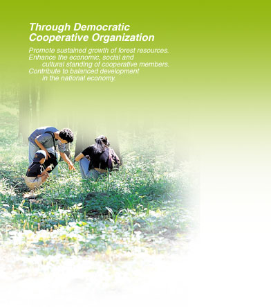 Through Democratic Cooperative Organization - Promote sustained growth of forest resources. Enhance the economic, social and cultural standing of cooperative members. Contribute to balanced development  in the national economy.