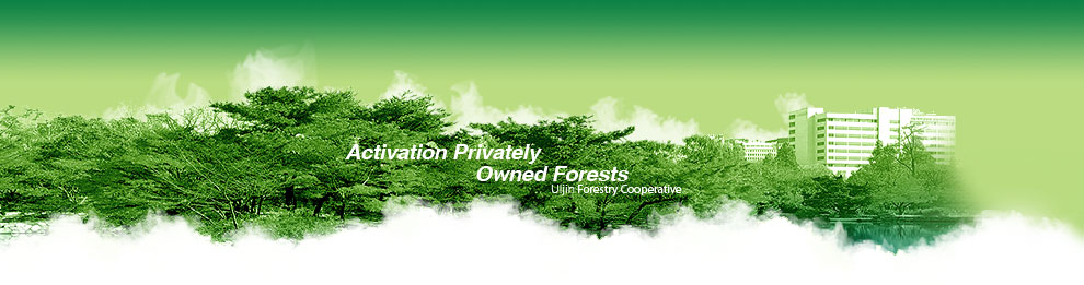 Activation Privately Owned Forests uljin Forestry Cooperative